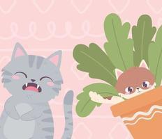 gato e gatinho cinza fofos em animais de estimação em vasos de plantas vetor