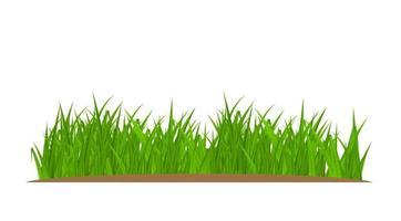 elemento de decoração de cartão comemorativo de grama e fronteira isolado no fundo branco vetor