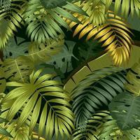 fundo de folhas de palmeira tropical vetor