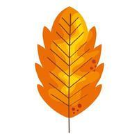 folha de outono seca vetor