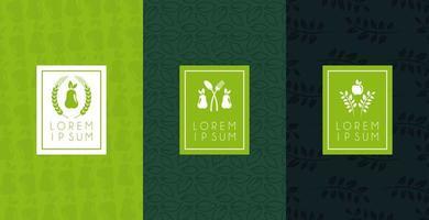 cartaz de comida premium e saudável com ícones definidos vetor