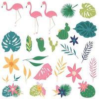 conjunto tropical com folhas e flamingo vetor