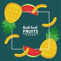 frutas frescas locais com melancias e abacaxis em fundo verde vetor