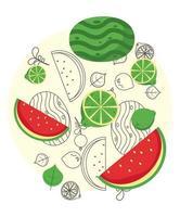 frutas frescas locais com melancia no fundo branco vetor