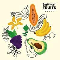 frutas locais frescas com padrão de bananas e frutas vetor
