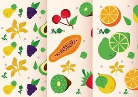 conjunto de padrões de frutas locais frescas vetor