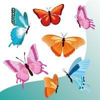 borboletas voadoras fofas vetor