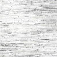 Fundo abstrato textura cinza vetor