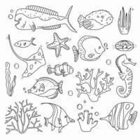 Sea Life Doodle Set Fisches and Corals Collection mão afogar elementos subaquáticos em estilo fofo vetor