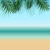 fundo abstrato de verão com folhas de palmeira, praia e beira-mar vetor