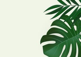 fundo tropical de folhas de palmeira verde realista natural vetor