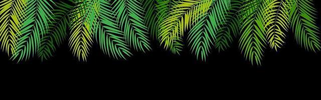 fundo de silhueta de folha de palmeira linda vetor