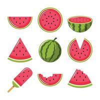 frutas de melancia preparadas para o verão vetor