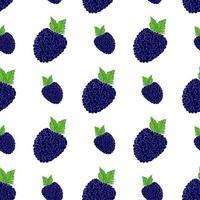 frutas fundo padrão sem emenda com ilustração em vetor skech blackberry desenhada à mão