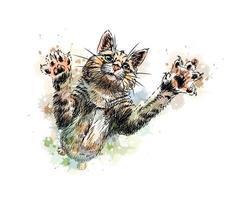 gato brincando com um toque de aquarela desenho desenhado à mão ilustração vetorial de tintas vetor