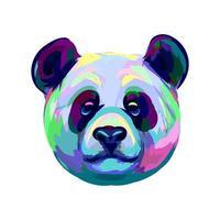 retrato de uma cabeça de urso panda de um toque de aquarela desenho desenhado à mão ilustração vetorial de tintas vetor