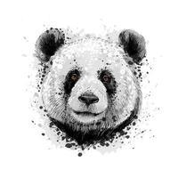 retrato de um urso panda de um toque de aquarela desenho desenhado à mão ilustração vetorial de tintas vetor