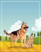 cães e gatos mascotes domésticos no campo vetor