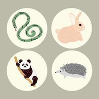 conjunto de desenhos animados de animais vetor