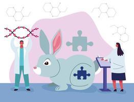 teste genético com coelho vetor