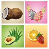 pacote de seis frutas e plantas tropicais conjunto de ícones vetor