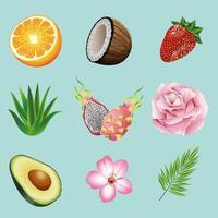 pacote de nove frutas e plantas tropicais com ícones em fundo azul vetor