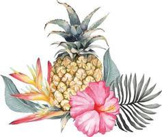 composição de abacaxi e hibisco com aquarela 2 vetor