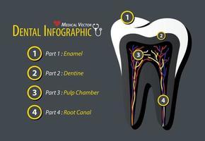 infográfico odontológico design plano vetor