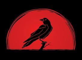 vetor pássaro corvo