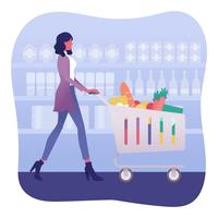 Vetor de compras de mercearia