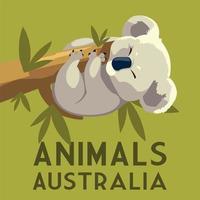 coala pendurado galho eucalipto árvore animal australiano vetor