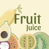 suco de frutas kiwi fresco mamão mangostão abacate vetor