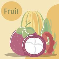 comida orgânica saudável de frutas frescas de mangostão pitaiaia e mamão vetor