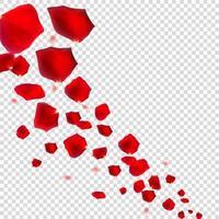 ilustração vetorial realista de pétalas de rosa naturais abstratas vetor