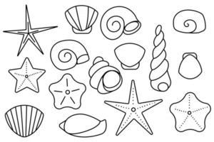 conjunto de moluscos conchas do mar conchas da areia do mar vetor