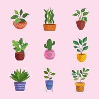 feixe de nove plantas caseiras em vasos de cerâmica vetor