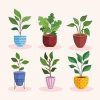 feixe de seis plantas caseiras em vasos de cerâmica vetor