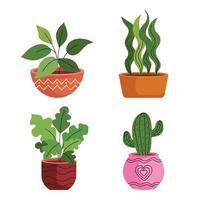 feixe de quatro plantas caseiras em vasos de cerâmica vetor
