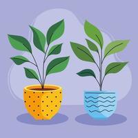 duas plantas caseiras em vasos de cerâmica vetor