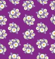 padrão floral sem costura flor bluebell e camomila fundo de campo de verão vetor