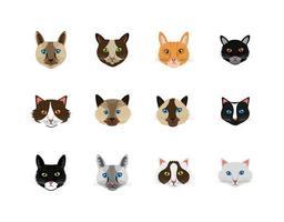 agrupar rostos de gatos ícones de animais felinos vetor