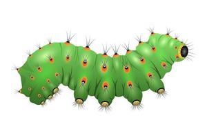lagarta verde isolada estilo cartoon vetor