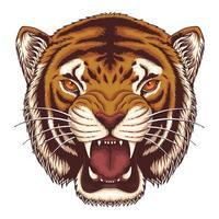 ilustração vetorial cabeça de tigre zangado vetor