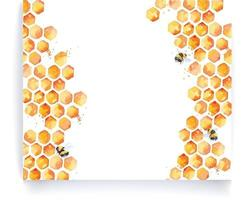abelhas e bordas de aquarela de mel vetor