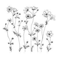 pequenas flores silvestres linha ilustração de mão desenhada com flores silvestres de verão. erva de flor minimalista e planta medicinal para design de tatuagem de decoração cartão postal vetor