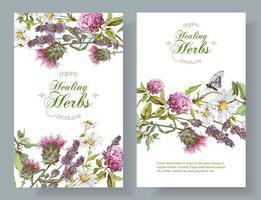 cartão decorativo de ervas florais vetor