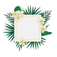 fundo tropical exótico natural vazio abstrato. pode ser usado como venda de pôsteres, anúncios ou cartão vetor