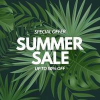 cartaz de venda de verão. fundo natural com folhas de palmeira tropical vetor