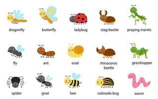 conjunto de insetos bonitos dos desenhos animados com ilustrações de nomes de vetores
