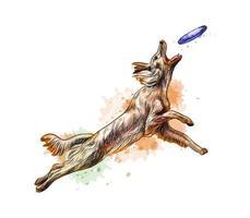 cachorro pegando o disco voador de um respingo de aquarela desenho desenhado à mão ilustração vetorial de tintas vetor